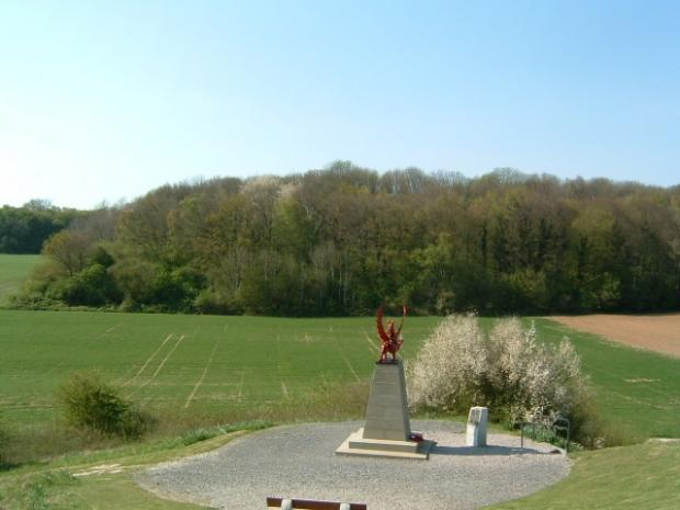 North Wales Pioneer: The Memorial to the 39th(Welsh) Division at Mametz Wood. Picture: Allan George