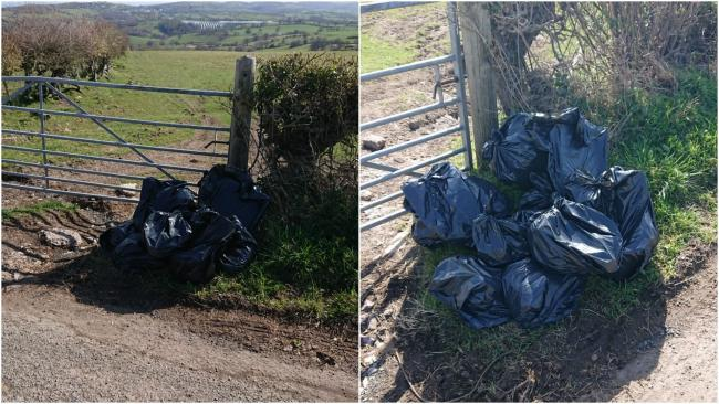 The documents were found among the fly tipped bags in Llanelian. Picture: Twitter/ NWP Rural Crime Team