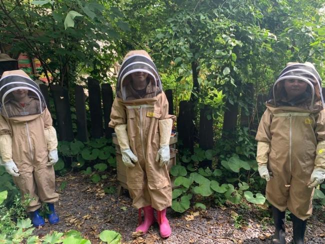Some of Ysgol San Sior's pupils taking care of the school's hives