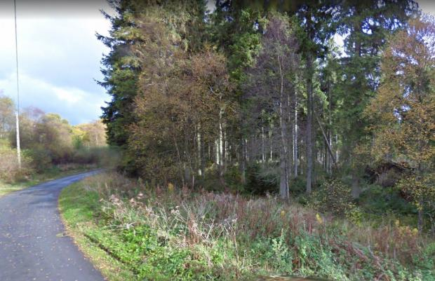North Wales Pioneer: Clocaenog Forest. Image: Google StreetView
