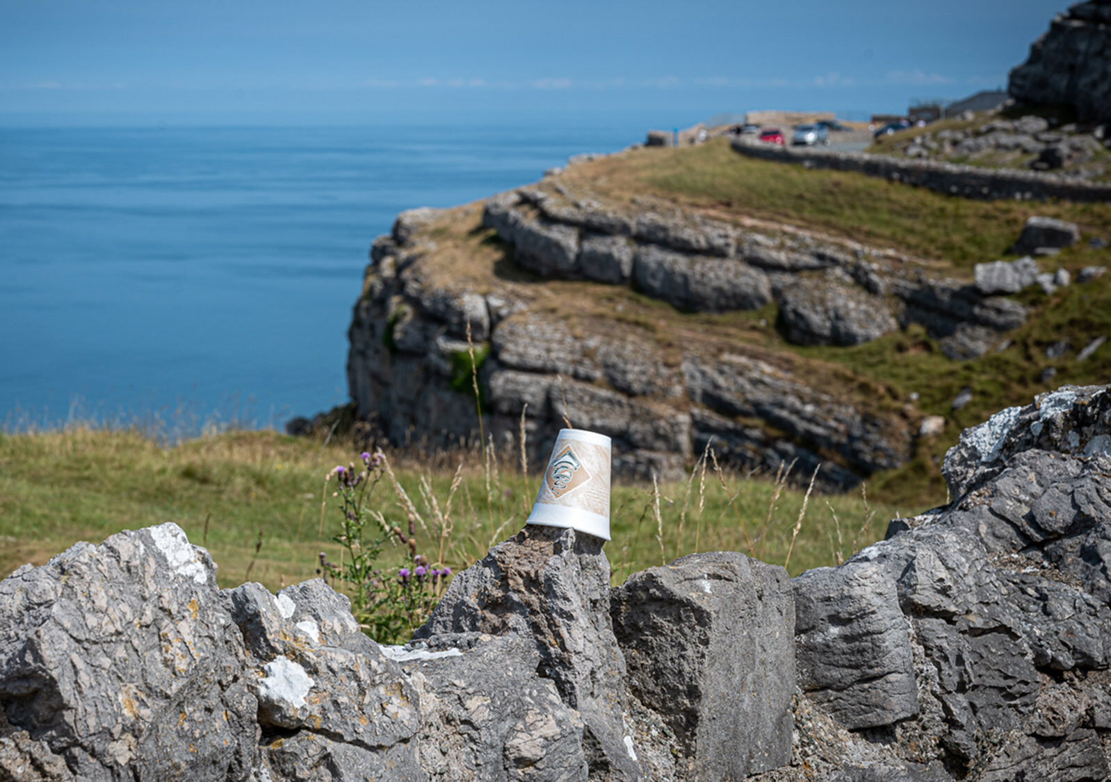 Great Orme cup by Tony Davies