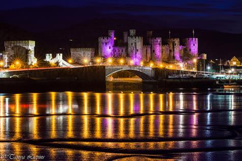 Conwy Castle turned purple